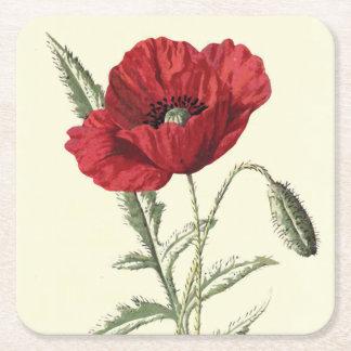 Common Poppy Vintage Botanical Illustration Square Paper Coaster