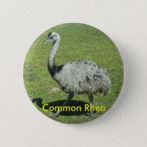 Common Rhea button