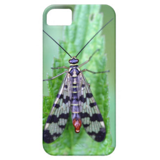 Common Scorpion Fly (Panorpa communis) iPhone SE/5/5s Case