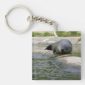Common seal keychain
