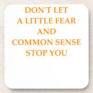 common sense coaster