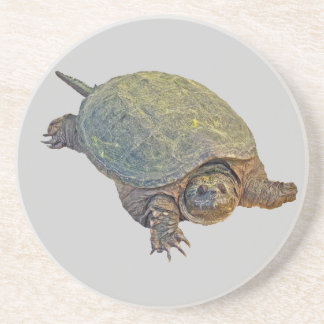 Common Snapping Turtle - Chelydra serpentina Drink Coaster