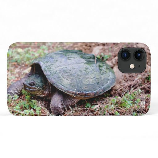 Common Snapping Turtle, iPhone Case. iPhone 11 Case