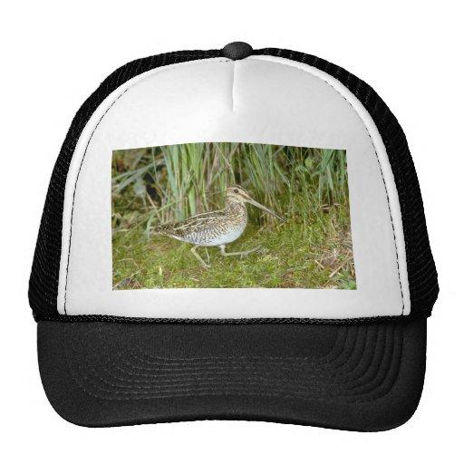 Common Snipe Trucker Hat