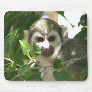 Common Squirrel Monkey Mouse Pad