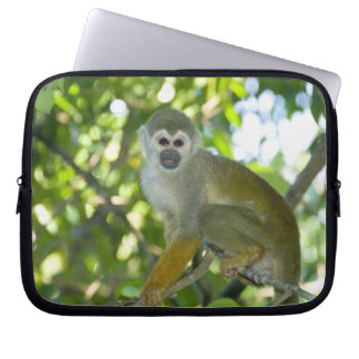 Common Squirrel Monkey (Saimiri sciureus) Rio Laptop Sleeve