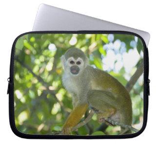 Common Squirrel Monkey (Saimiri sciureus) Rio Computer Sleeves