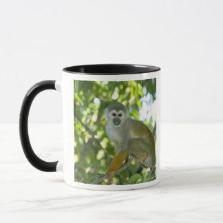 Common Squirrel Monkey (Saimiri sciureus) Rio Mug