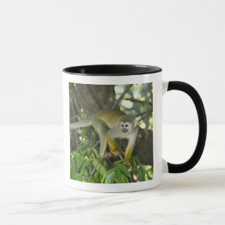 Common Squirrel Monkey, (Saimiri sciureus), Rio Mug