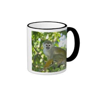 Common Squirrel Monkey (Saimiri sciureus) Rio Ringer Mug