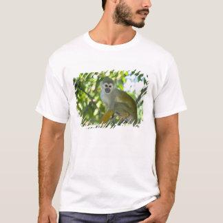 Common Squirrel Monkey (Saimiri sciureus) Rio T-Shirt