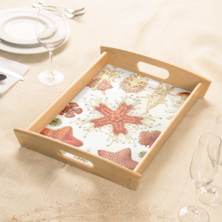 Common Starfish Designs Serving Platters