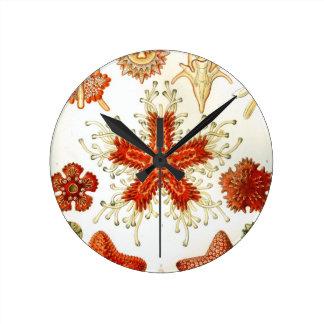 Common Starfish Designs Round Clock