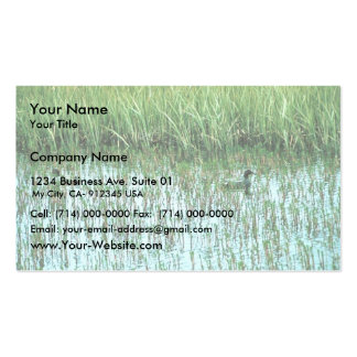 Common Teal Business Card