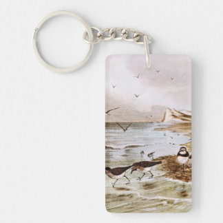 Common Terns on the Shore Keychain