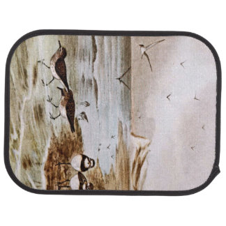Common Terns on the Shore Car Mat