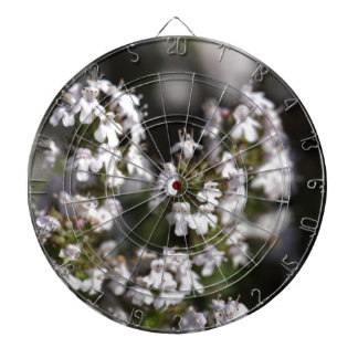 Common thyme dartboard with darts