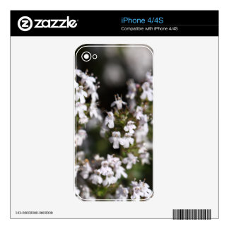 Common thyme iPhone 4S decals