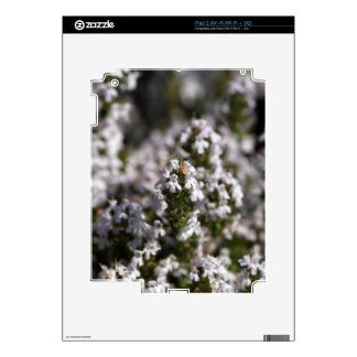Common thyme skins for the iPad 2