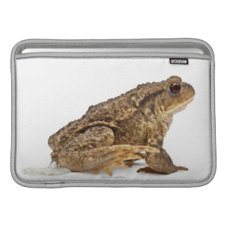 Common toad or European toad (Bufo bufo) pissing MacBook Air Sleeves