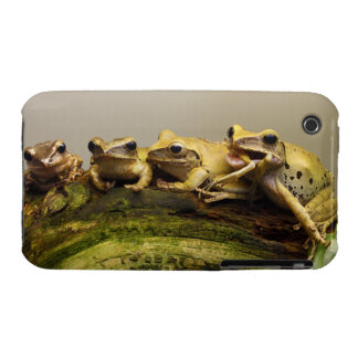 Common Tree Frog Polypedates Leucomystax Case-Mate iPhone 3 Cases