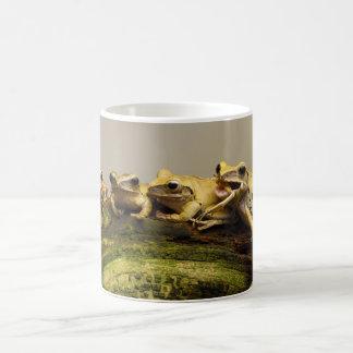 Common Tree Frog Polypedates Leucomystax Coffee Mug