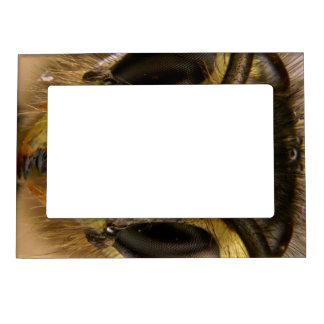 Common Wasp Vespula Vulgaris Magnetic Picture Frame