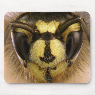 Common Wasp Vespula Vulgaris Mouse Pad