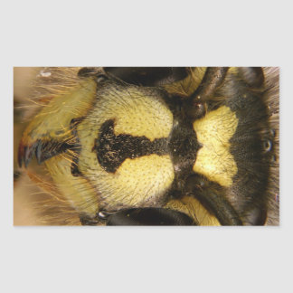Common Wasp Vespula Vulgaris Rectangular Sticker