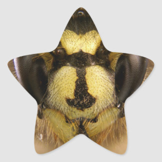Common Wasp Vespula Vulgaris Star Sticker