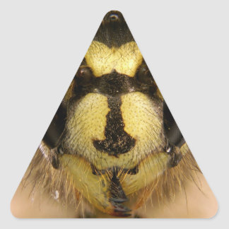 Common Wasp Vespula Vulgaris Triangle Sticker
