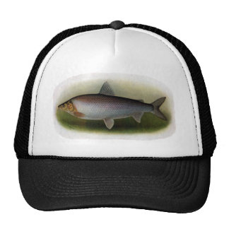 Common Whitefish of Lake Erie Trucker Hat