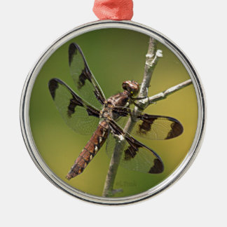 Common Whitetail Skimmer Dragonfly Female. Christmas Tree Ornament