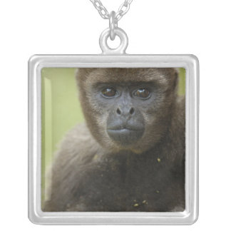 Common Woolly Monkey Lagothris lagothricha), Silver Plated Necklace