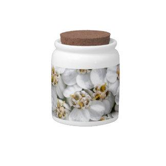 Common yarrow (Achillea millefolium) Candy Dish