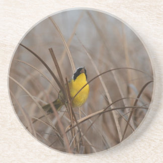 Common Yellowthroat Bird Coaster