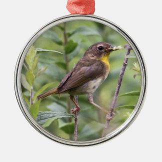 Common Yellowthroat Metal Ornament