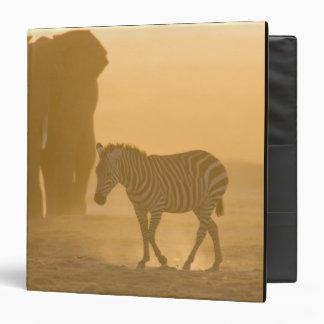 Common Zebra, Equus burchelli, and Elephant, Vinyl Binder
