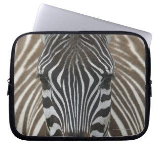 Common Zebra (Equus quagga), close up Laptop Computer Sleeve