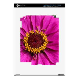 Common zinnia (Zinnia elegans) iPad 3 Decals