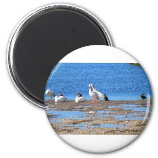 Communal Bath 2 Inch Round Magnet