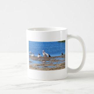 Communal Bath Coffee Mug