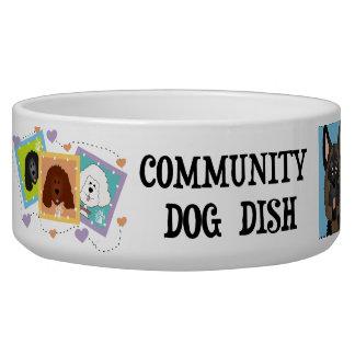 Community Dog Dish Pet Bowl