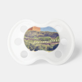 Community Recycling Pacifier