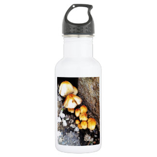 Community Stainless Steel Water Bottle
