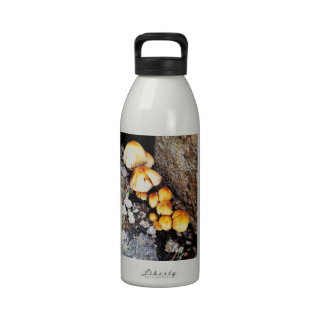 Community Reusable Water Bottle