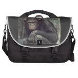 Commuter Bag chimpanzee africa