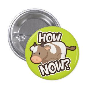 ¿Cómo ahora Botón Pin
