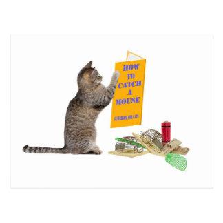 Cómo coger un ratón postales