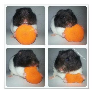 Cómo comer una zanahoria comunicados